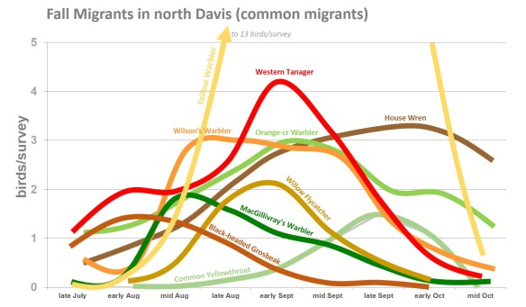 DavisMigrants1